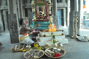 Prayers, yagna for rain held at Sri Kapali Temple on 20-6-13