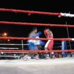 Boxing contests held in R. A. Puram playground