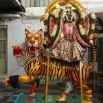 Women devotees donate Puli Vahanam to Velleswarar Temple