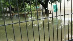 MT RAIN M C T M School
