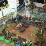 A new stop for gardening needs - at Abhiramapuram
