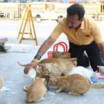 'Cat Man' of Mylapore; Feeds more than 60 cats everyday