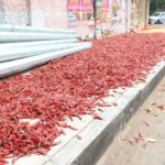 Pavements are also for drying chillies!