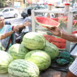 Melons have arrived. Check out Jeeva's nook at Mandaveli