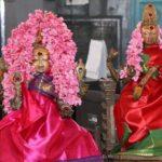 Panguni fest: Grama devathai pooja held at Sri Kolavizhi Amman Temple today morning