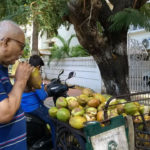This tender coconut seller respects seniors; prices are fixed