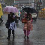 Rain cools down the neighbourhood