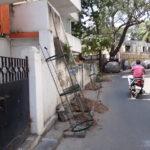 GCC plants trees along neighbourhood streets