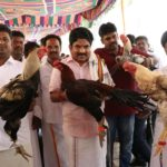 Poultry exhibition held at Luz