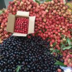 Lychees, black plums and cherries have arrived
