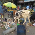 Hawkers continue to dump waste on South Mada Street