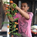 A food vendor makes creative decoration item off R. K. Mutt Road