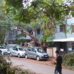Hanging logs and cables pose a danger to the residents of R. K. Nagar Second Cross Street