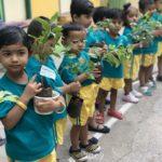 Bamboola's preschoolers have a green thumb