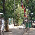 AIADMK flagposts erected on C. P. Ramaswamy Road for wedding