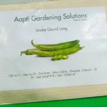 Native vegetable seeds on sale at Diya Organic store in Mylapore