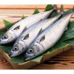 TNFDC's fish store in MRC Nagar to home deliver fish