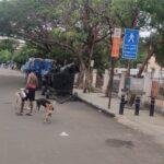 Fitness fanatics make use of Alphonsa ground to loosen up