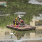 Devotees will not be allowed inside Sri Kapali Temple during Pradosham, key events