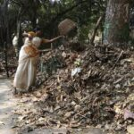 Huge mounds of leaf waste in Nageswara Rao Park; better recycling possible?