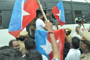 protest at luz signal on 5-7-13