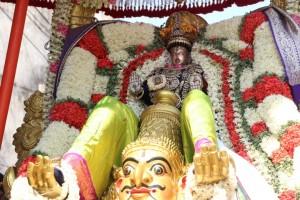 Chitirai Thiruvonam festival - madhava perumal temple