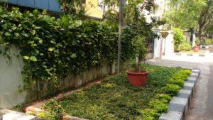 thiruveedhi-amman-koil street