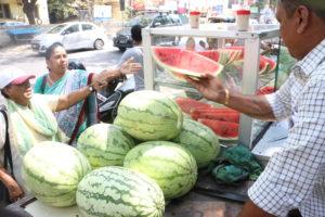 water melon sale